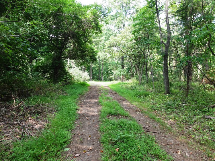 D&R Greenway Land Trust Announces New Preserved Property in East Amwell